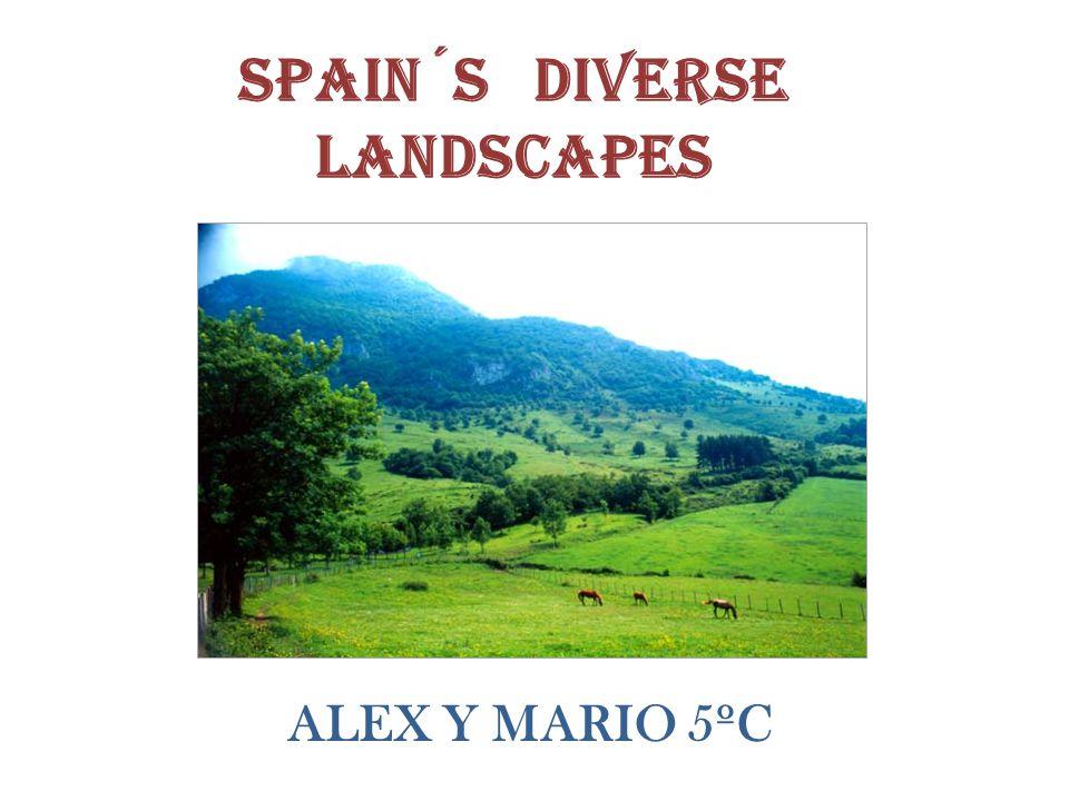 Spain´s diverse landscapes ALEX Y MARIO 5ºC