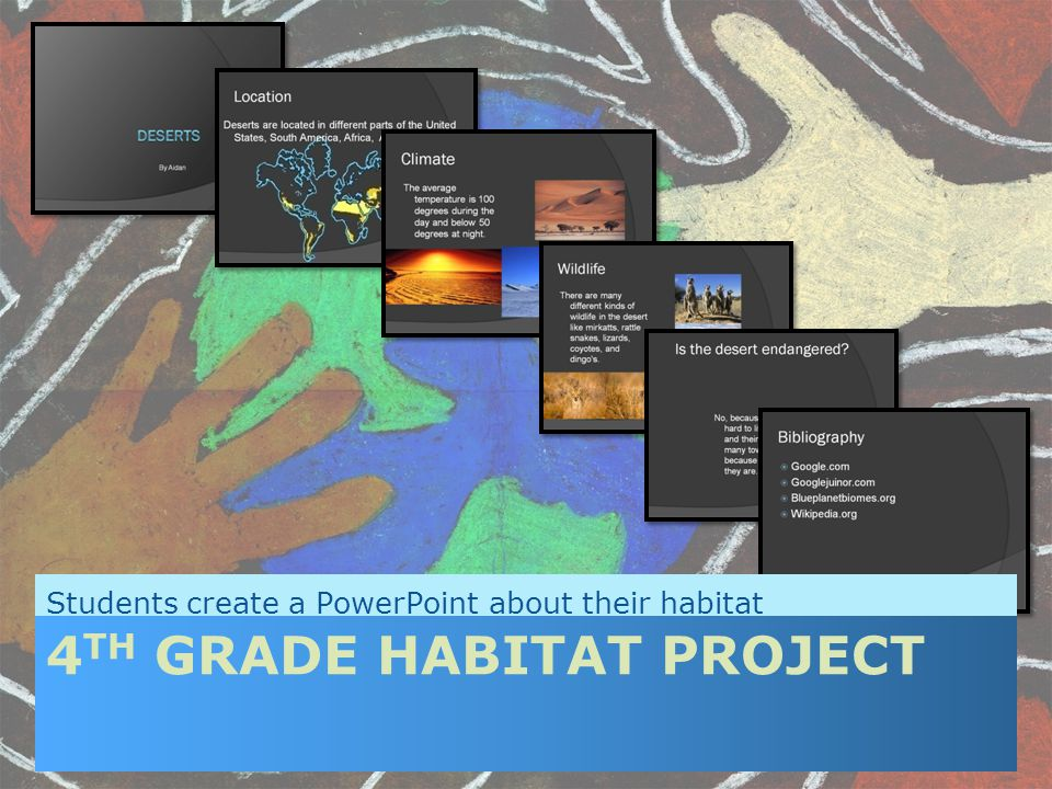 Students create a PowerPoint about their habitat 4 TH GRADE HABITAT PROJECT
