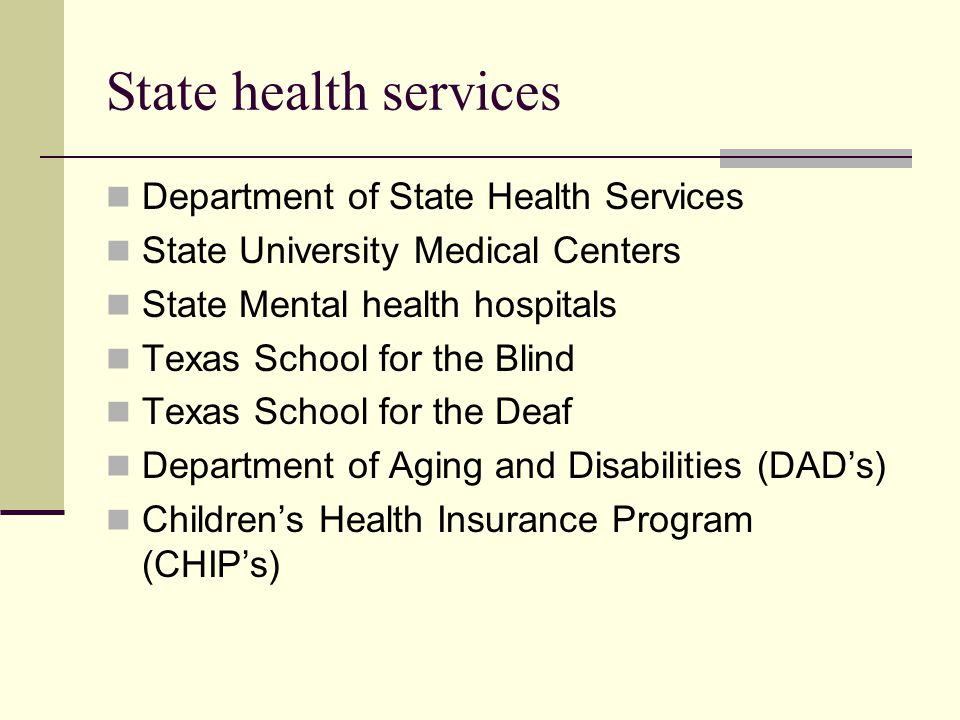 State health services Department of State Health Services State University Medical Centers State Mental health hospitals Texas School for the Blind Texas School for the Deaf Department of Aging and Disabilities (DAD's) Children's Health Insurance Program (CHIP's)
