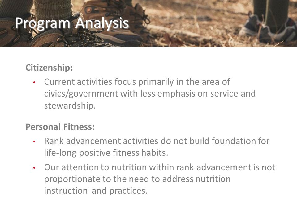 Program Analysis Citizenship: Current activities focus primarily in the area of civics/government with less emphasis on service and stewardship. Perso