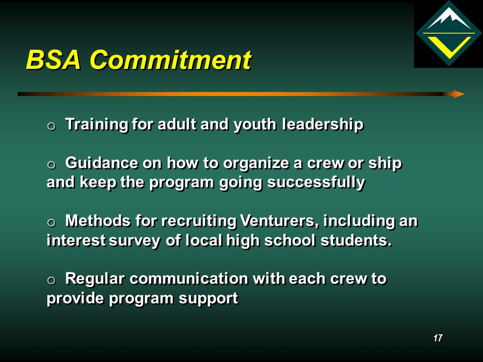 16 BSA Local Council What is the role of the local BSA council.