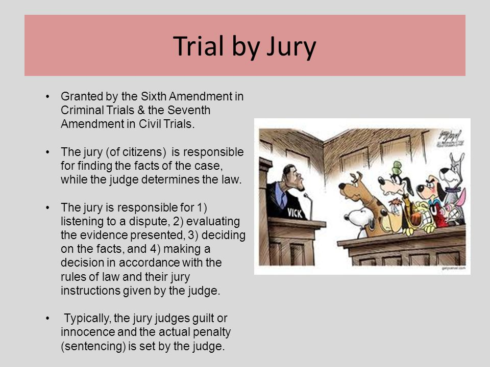 Trial by Jury Granted by the Sixth Amendment in Criminal Trials & the Seventh Amendment in Civil Trials. The jury (of citizens) is responsible for fin