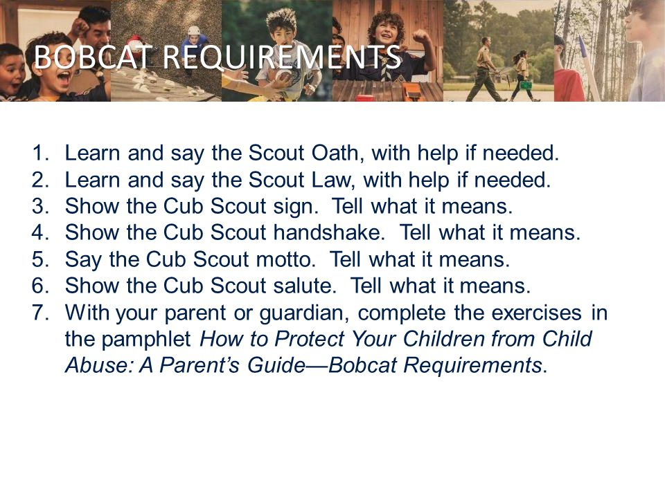 BOBCAT REQUIREMENTS 1.Learn and say the Scout Oath, with help if needed.