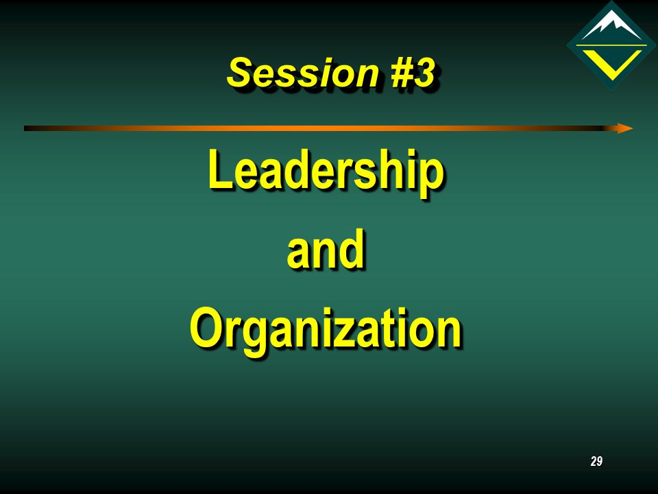 29 Session #3 LeadershipandOrganizationLeadershipandOrganization