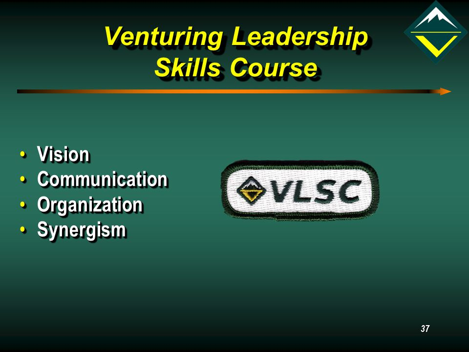 37 Venturing Leadership Skills Course Vision Vision Communication Communication Organization Organization Synergism Synergism Vision Vision Communication Communication Organization Organization Synergism Synergism