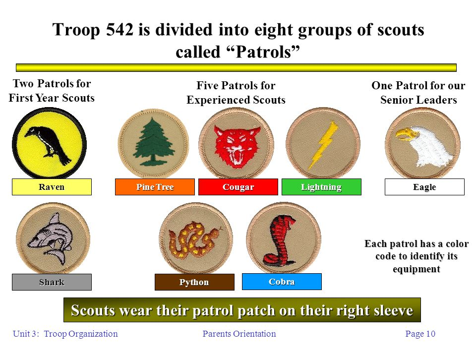 Parents OrientationPage 10 Troop 542 is divided into eight groups of scouts called Patrols Two Patrols for First Year Scouts Five Patrols for Experienced Scouts One Patrol for our Senior Leaders Shark Cobra Pine Tree Lightning Python RavenEagle Each patrol has a color code to identify its equipment Scouts wear their patrol patch on their right sleeve Unit 3: Troop Organization Cougar