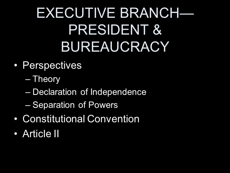 EXECUTIVE BRANCH— PRESIDENT & BUREAUCRACY Perspectives –Theory –Declaration of Independence –Separation of Powers Constitutional Convention Article II