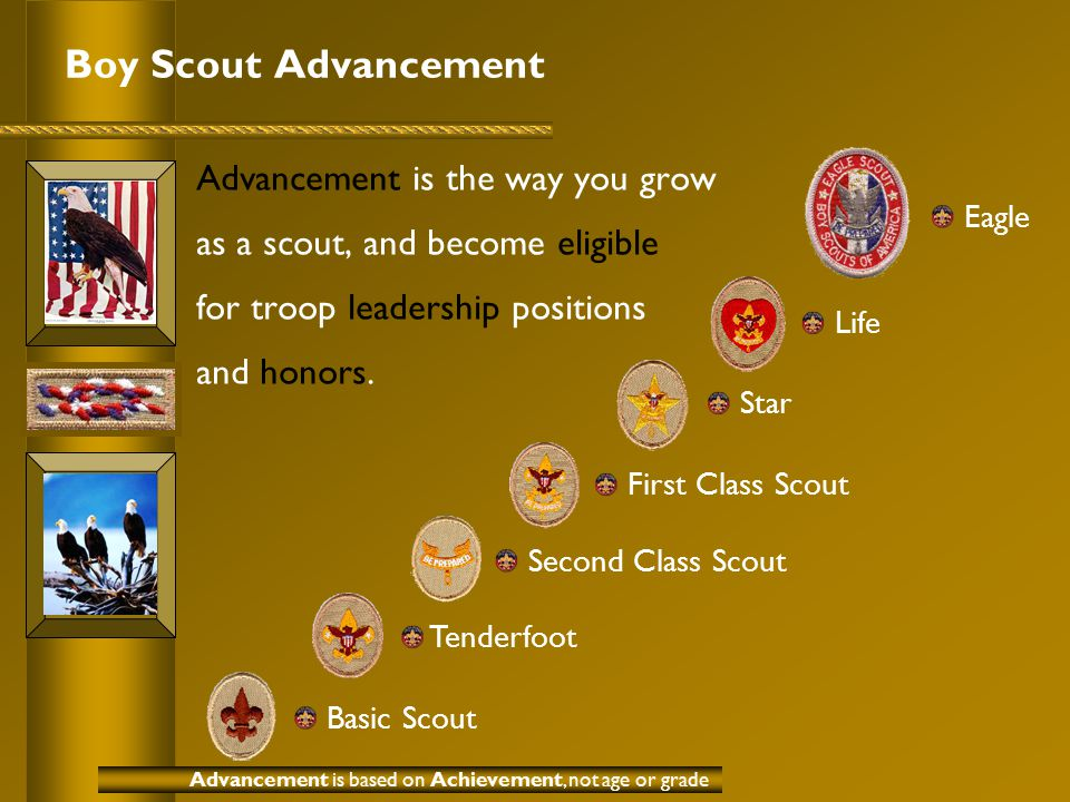 Boy Scout Advancement Advancement is the way you grow as a scout, and become eligible for troop leadership positions and honors.