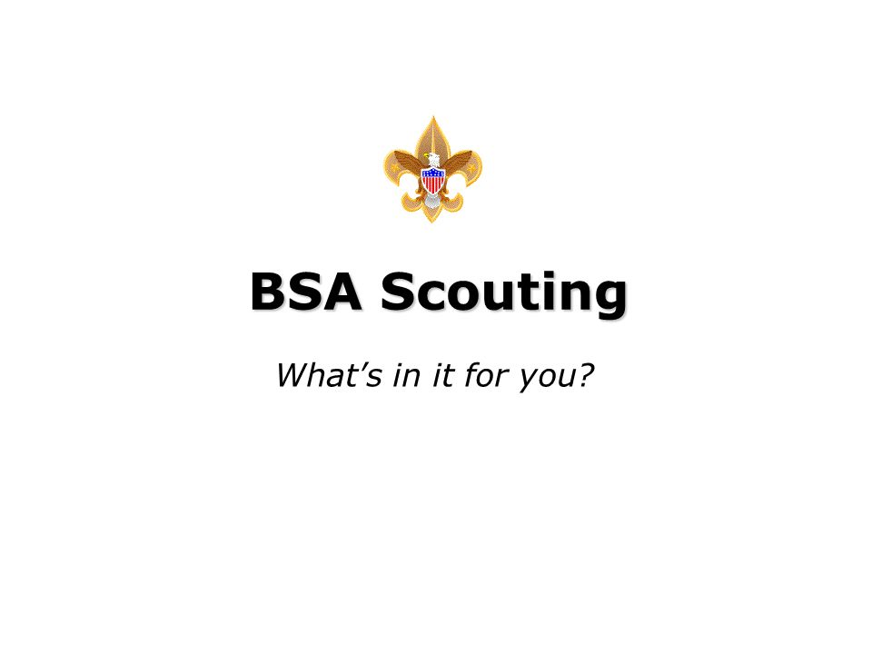 Intel Confidential BSA Scouting What's in it for you?