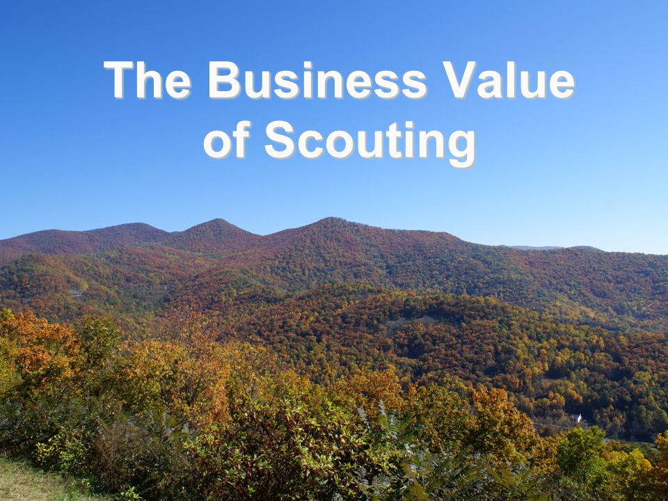 The Business Value of Scouting