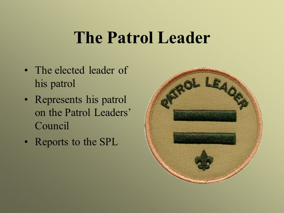 The Patrol Leader The elected leader of his patrol Represents his patrol on the Patrol Leaders' Council Reports to the SPL