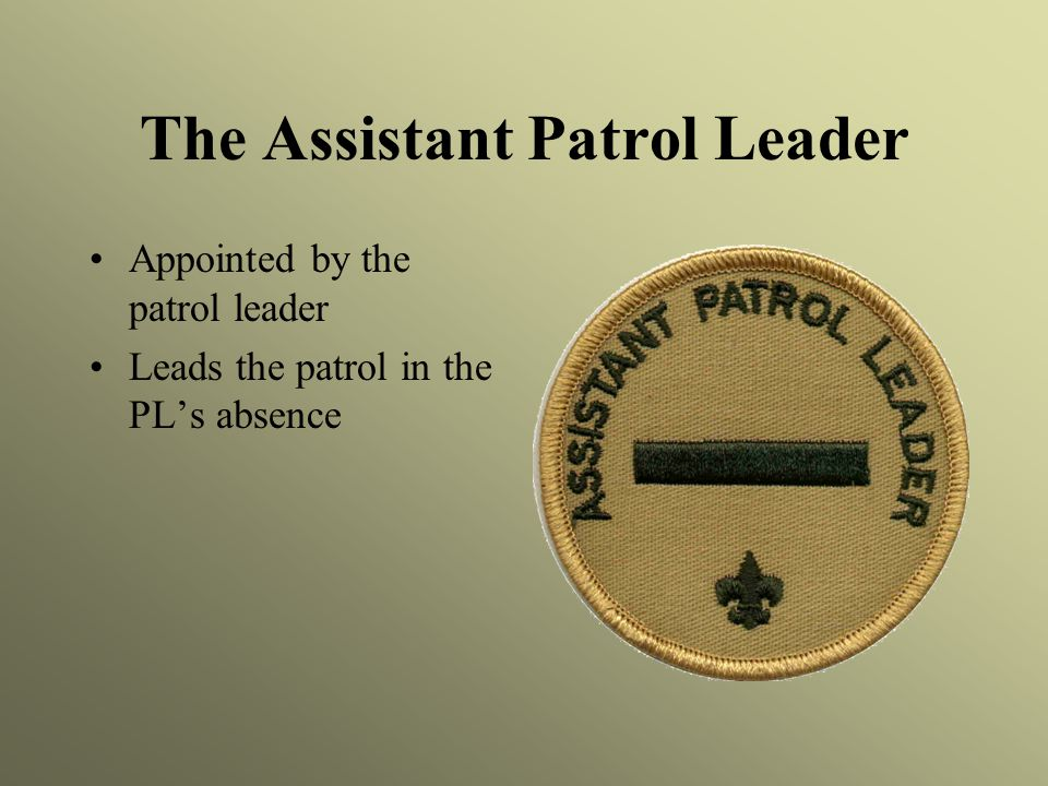The Assistant Patrol Leader Appointed by the patrol leader Leads the patrol in the PL's absence