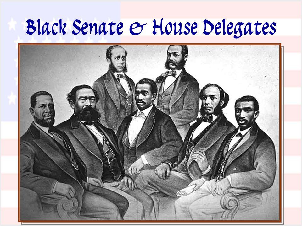 Black Senate & House Delegates