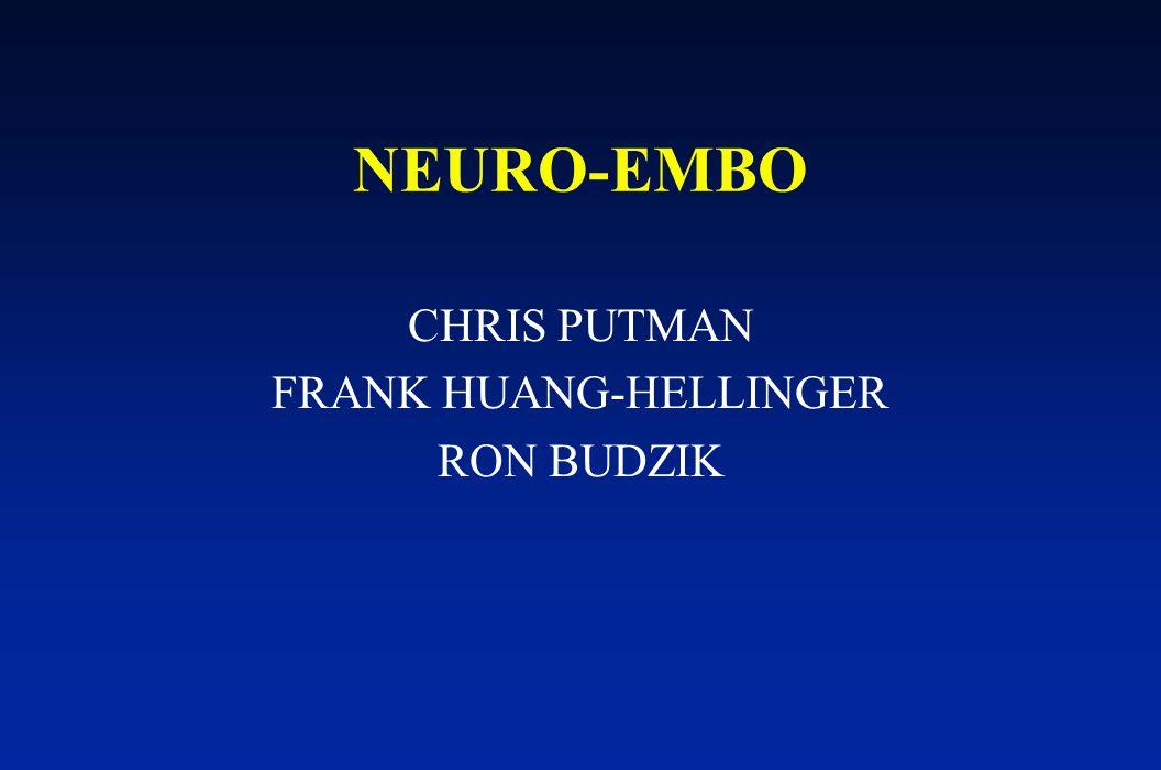 NEURO-EMBO CHRIS PUTMAN FRANK HUANG-HELLINGER RON BUDZIK