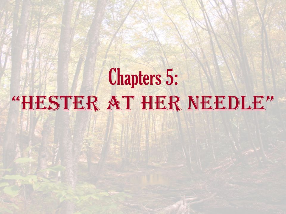 "Chapters 5: ""Hester at her Needle"""