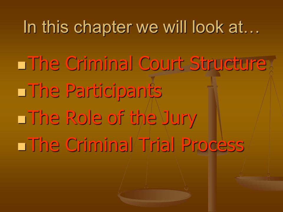 In this chapter we will look at… The Criminal Court Structure The Criminal Court Structure The Participants The Participants The Role of the Jury The Role of the Jury The Criminal Trial Process The Criminal Trial Process