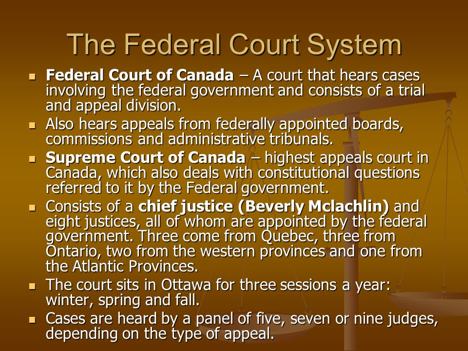 The Federal Court System Federal Court of Canada – A court that hears cases involving the federal government and consists of a trial and appeal division.