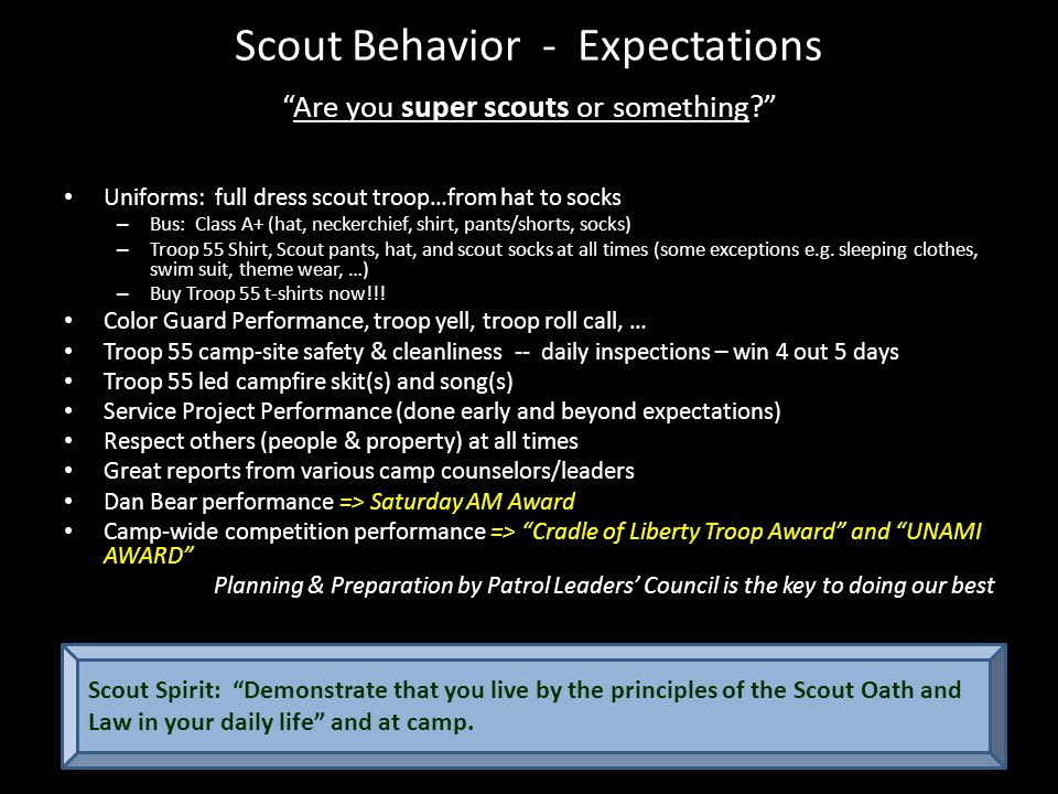 New Scout Program Dan Beard Program (First Year Campers) Troop Guides Adult liaisons