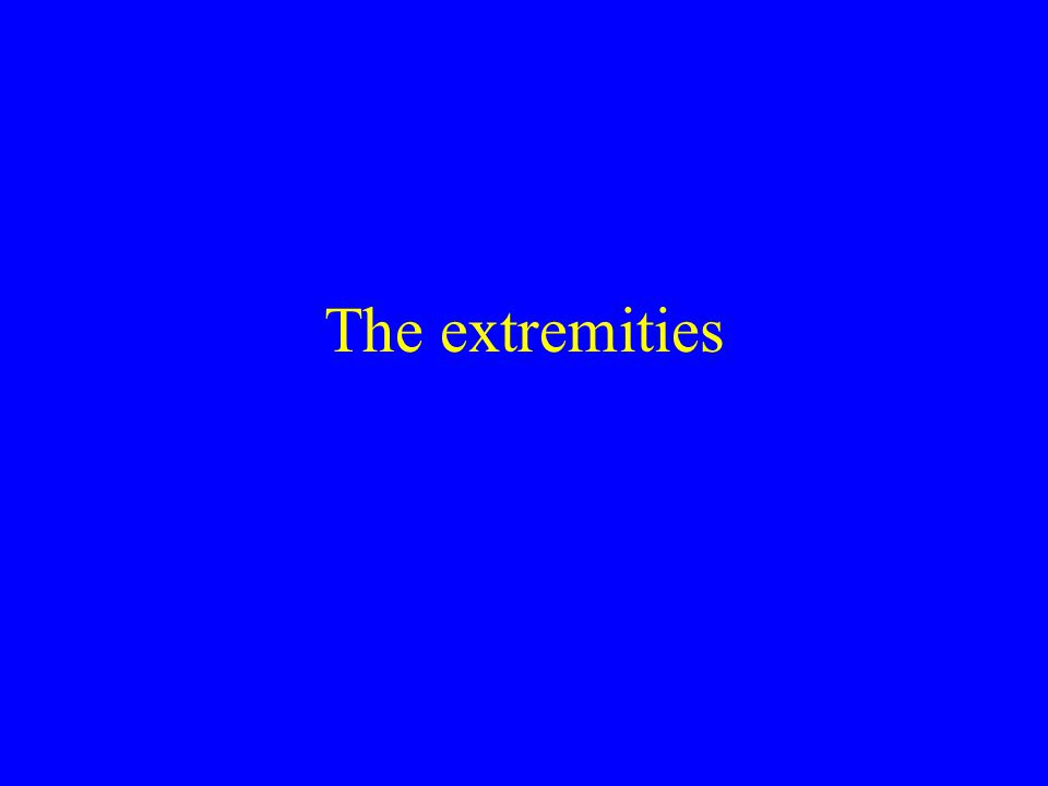 The extremities