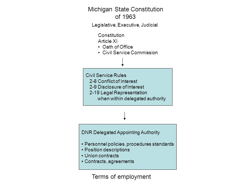 Michigan State Constitution of 1963 Legislative, Executive, Judicial Constitution Article XI Oath of Office Civil Service Commission Civil Service Rules 2-8 Conflict of Interest 2-9 Disclosure of Interest 2-19 Legal Representation when within delegated authority DNR Delegated Appointing Authority Personnel policies, procedures standards Position descriptions Union contracts Contracts, agreements Terms of employment