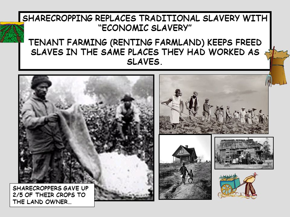 HOW DID THE SOUTH ATTEMPT TO PRESERVE PRE- WAR CULTURE? SOCIALLY ECONOMICALLY BLACK CODES LICENSING VAGRANCY LAWS SHARECROPPING TENANT FARMERS
