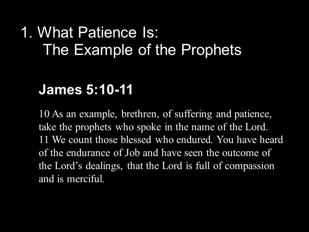 1. What Patience Is: The Example of the Prophets James 5:10-11 10 As an example, brethren, of suffering and patience, take the prophets who spoke in t