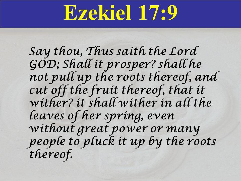 Ezekiel 17:9 Say thou, Thus saith the Lord GOD; Shall it prosper.