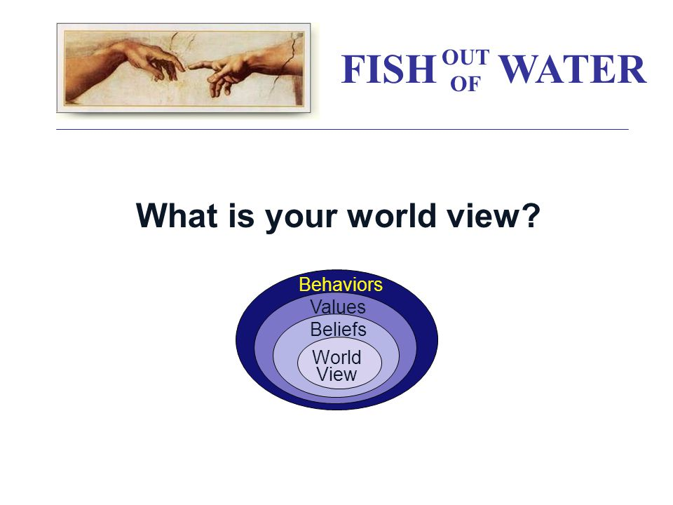 What is your world view Values World View Behaviors Beliefs FISH WATER OUT OF