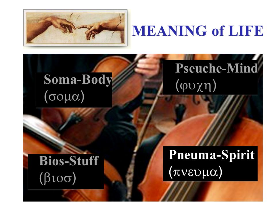 MEANING of LIFE Soma-Body (  ) Pneuma-Spirit (  ) Bios-Stuff (  ) Pseuche-Mind (  )