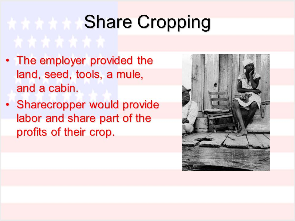 Share Cropping The employer provided the land, seed, tools, a mule, and a cabin.The employer provided the land, seed, tools, a mule, and a cabin.