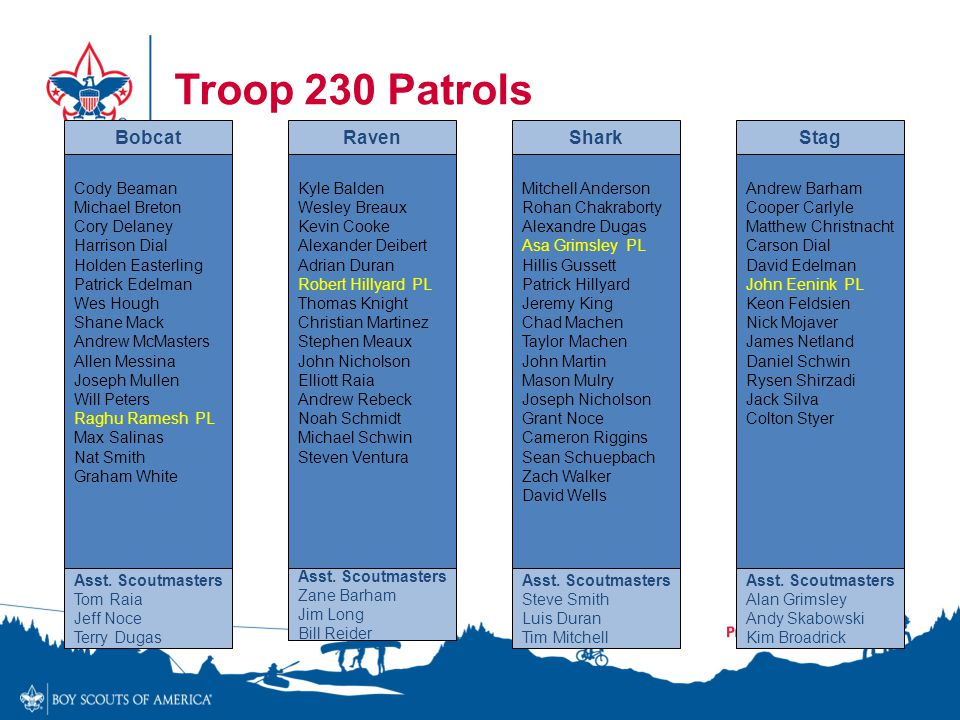Troop 230 Patrols Cody Beaman Michael Breton Cory Delaney Harrison Dial Holden Easterling Patrick Edelman Wes Hough Shane Mack Andrew McMasters Allen