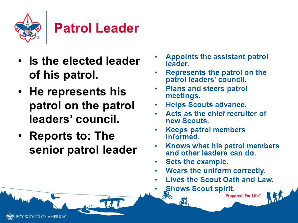 Patrol Leader Is the elected leader of his patrol. He represents his patrol on the patrol leaders' council. Reports to: The senior patrol leader Appoi