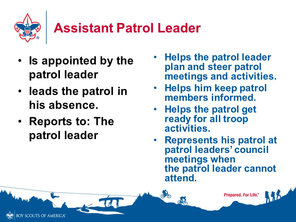 Assistant Patrol Leader Is appointed by the patrol leader leads the patrol in his absence. Reports to: The patrol leader Helps the patrol leader plan