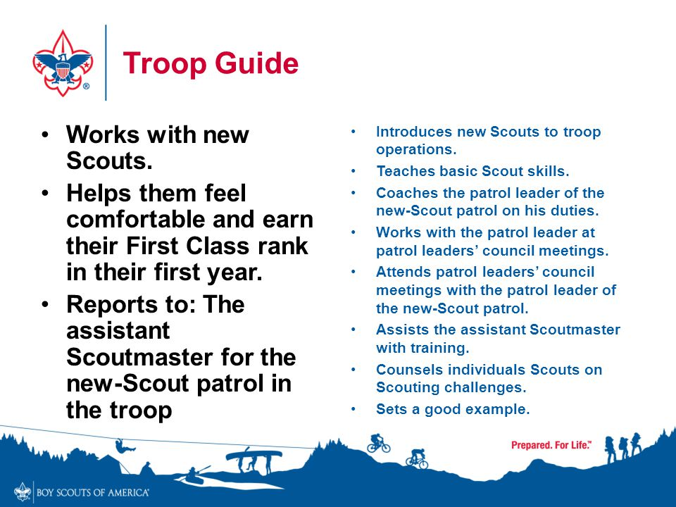 Troop Guide Works with new Scouts. Helps them feel comfortable and earn their First Class rank in their first year. Reports to: The assistant Scoutmas