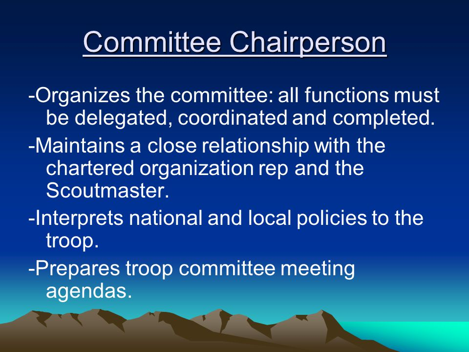 Committee Chairperson -Organizes the committee: all functions must be delegated, coordinated and completed.