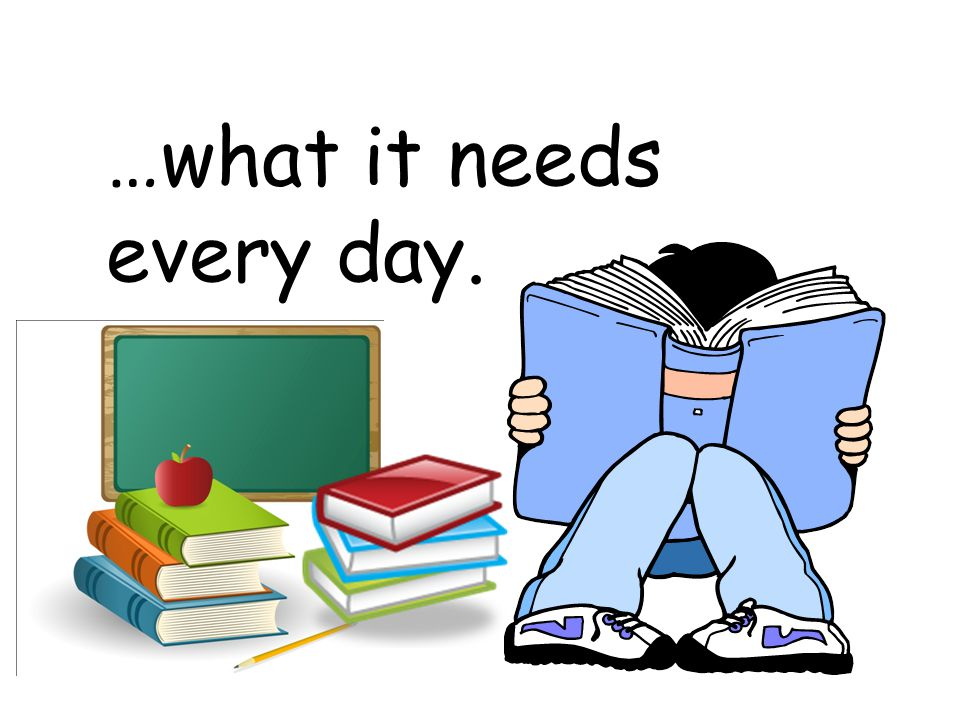 …what it needs every day.