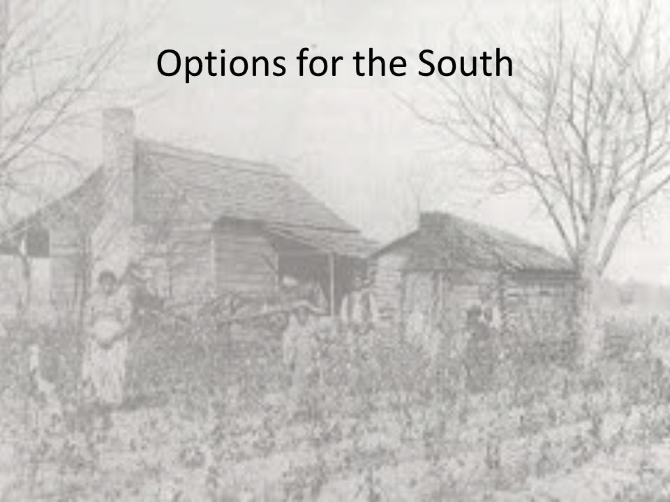 Options for the South