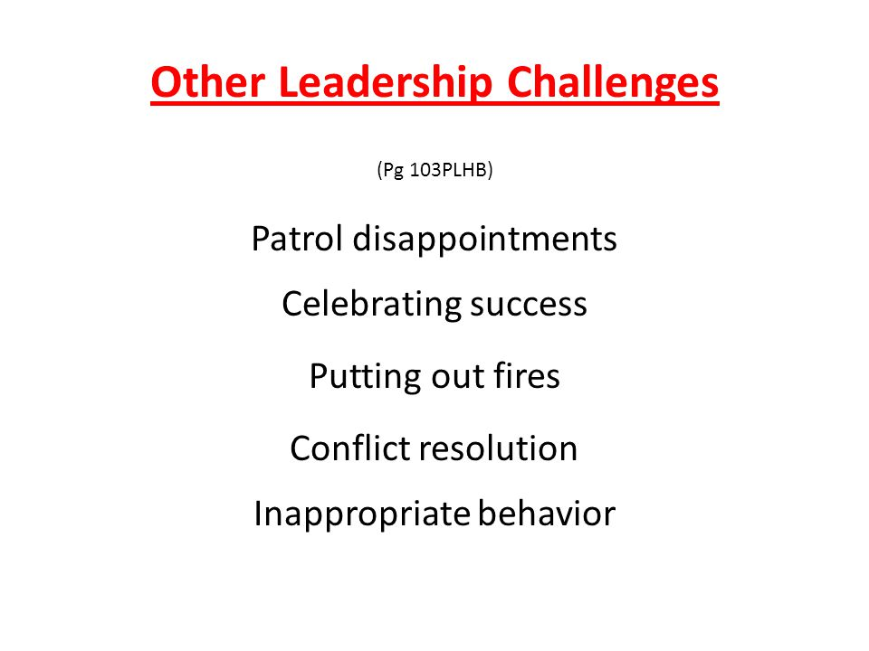 Other Leadership Challenges (Pg 103PLHB) Patrol disappointments Putting out fires Celebrating success Conflict resolution Inappropriate behavior
