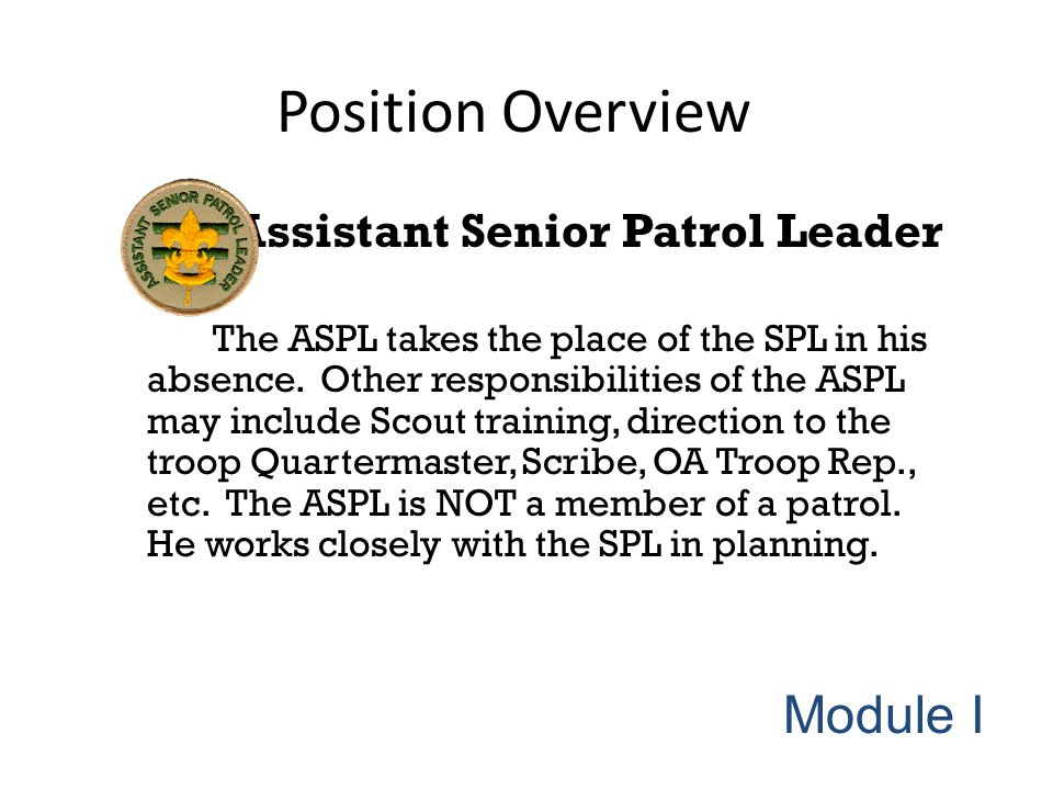 Position Overview Assistant Senior Patrol Leader The ASPL takes the place of the SPL in his absence. Other responsibilities of the ASPL may include Sc