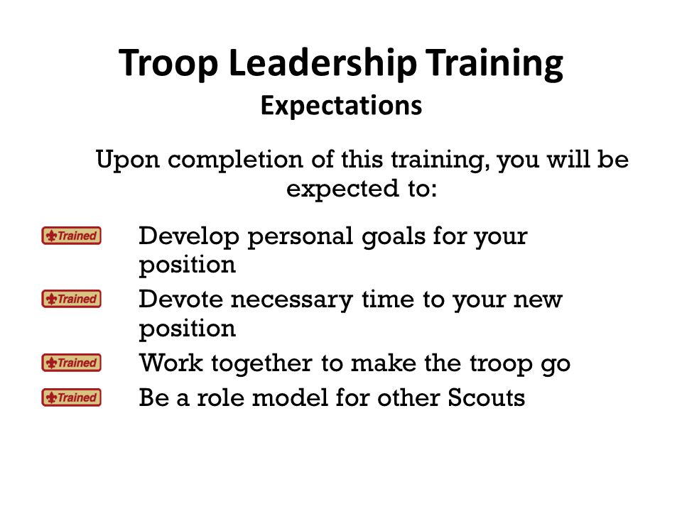 New youth leaders, to better understand their goals and expectations, need the guidance of the SM.