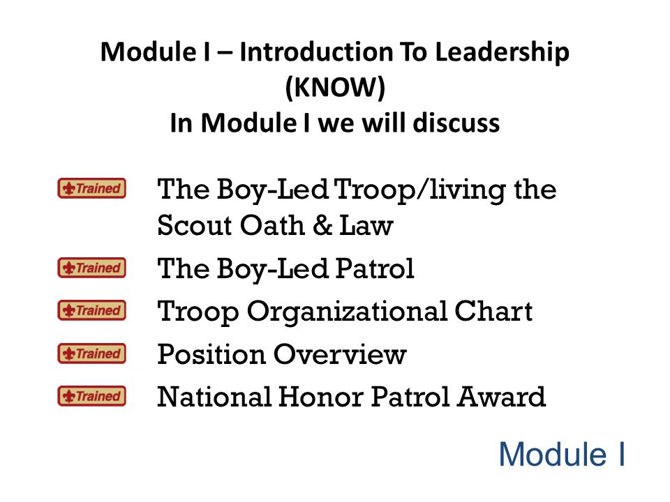 The Boy-Led Troop/Living The Oath & Law Scouting is a value-based program.