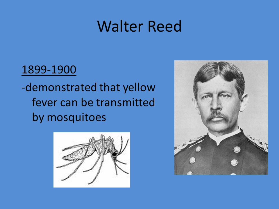Walter Reed 1899-1900 -demonstrated that yellow fever can be transmitted by mosquitoes