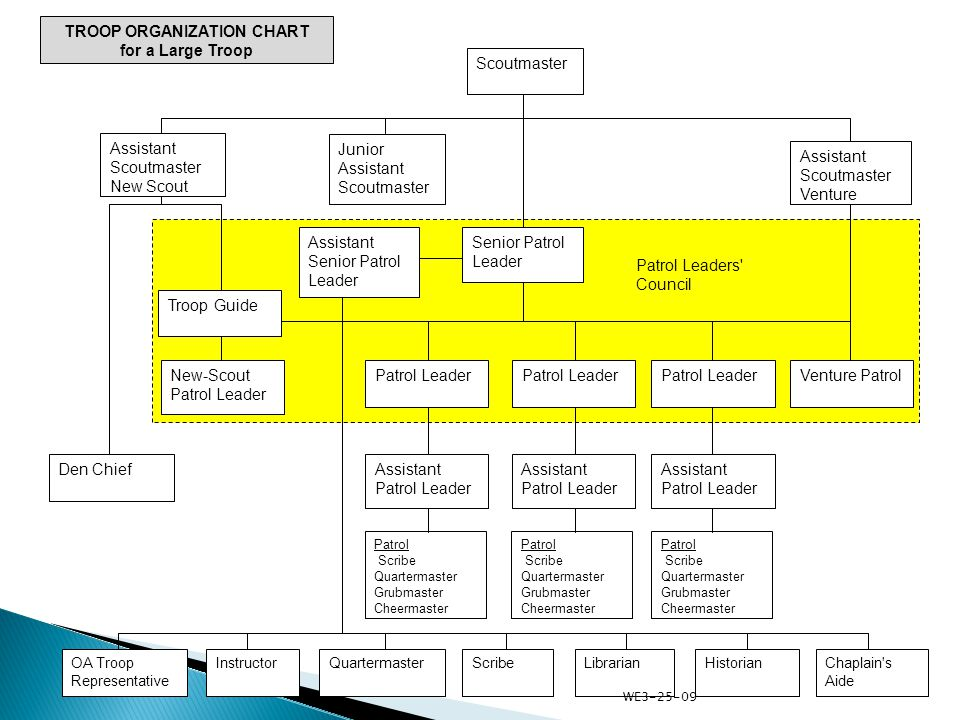 Scoutmaster TROOP ORGANIZATION CHART for a Large Troop Junior Assistant Scoutmaster Assistant Scoutmaster New Scout Assistant Scoutmaster Venture Senior Patrol Leader Assistant Senior Patrol Leader Patrol Leader Venture Patrol Assistant Patrol Leader Chaplain s Aide QuartermasterHistorianScribeLibrarianOA Troop Representative Instructor Patrol Scribe Quartermaster Grubmaster Cheermaster Patrol Scribe Quartermaster Grubmaster Cheermaster Patrol Scribe Quartermaster Grubmaster Cheermaster Troop Guide New-Scout Patrol Leader Den Chief Patrol Leaders Council WE