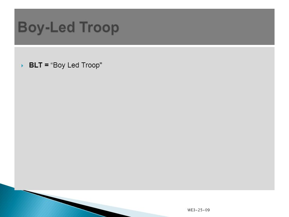  BLT = Boy Led Troop WE