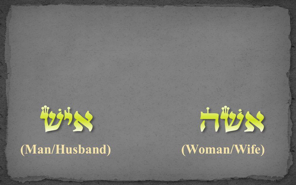 (Man/Husband) (Woman/Wife)