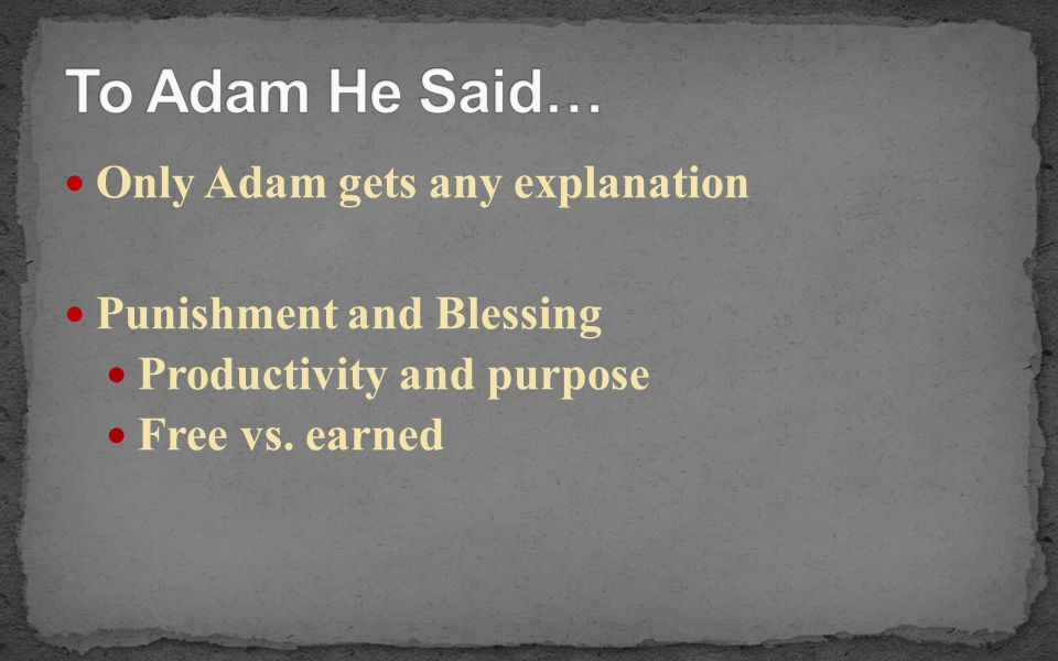 Only Adam gets any explanation Punishment and Blessing Productivity and purpose Free vs. earned