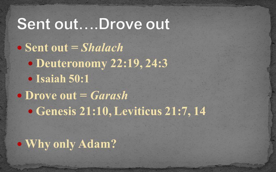 Sent out = Shalach Deuteronomy 22:19, 24:3 Isaiah 50:1 Drove out = Garash Genesis 21:10, Leviticus 21:7, 14 Why only Adam?
