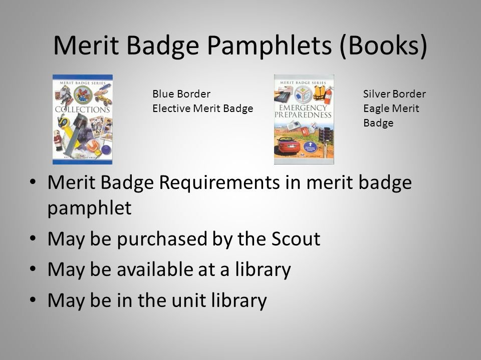 The Merit Badge Process The Scout (not an adult) will contact you to schedule a meeting.