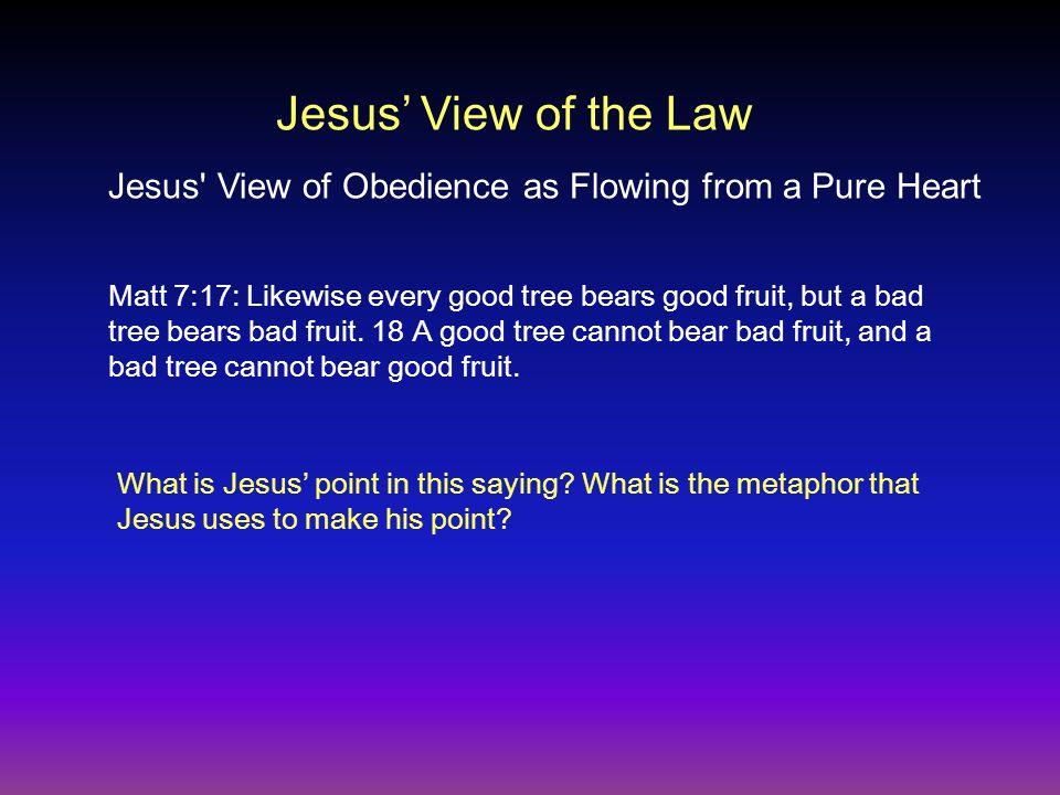 Matt 7:17: Likewise every good tree bears good fruit, but a bad tree bears bad fruit.