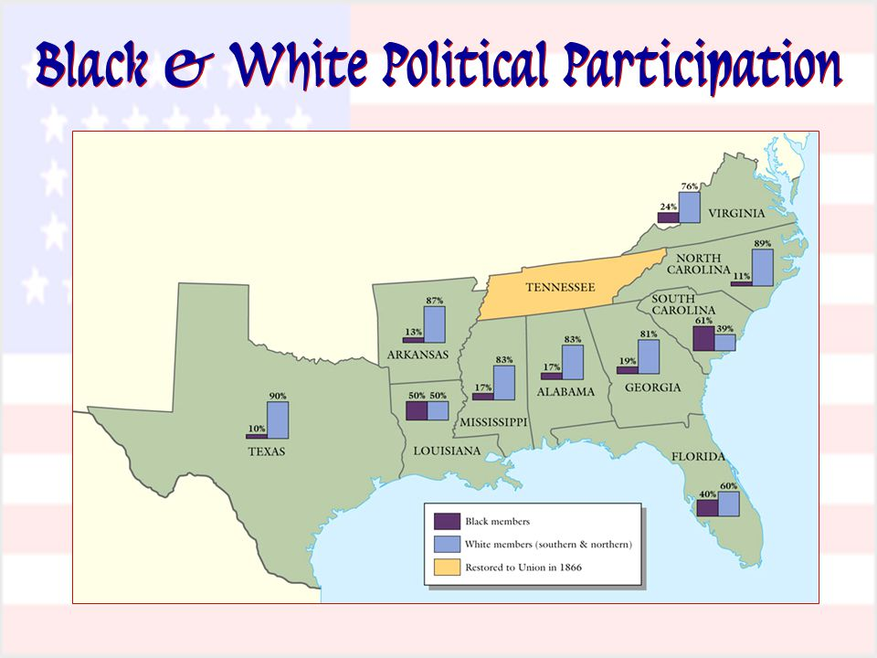 Black & White Political Participation